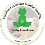 certificaat academie mindfull teaching